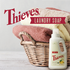 What Makes Thieves Laundry Soap Different