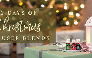 12 days of Christmas header