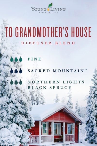 blog-12-days-of-Christmas-diffuser-blends-To-Grandmothers-House_Diffuser-Blend-Micrographic_