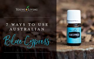 7 Ways to Use Australian Blue Cypress Essential Oil - Young Living Australia