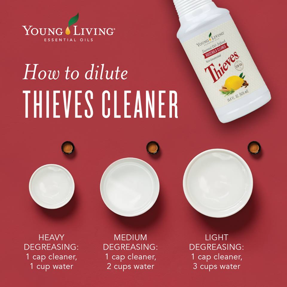 Dilute Thieves Cleaner