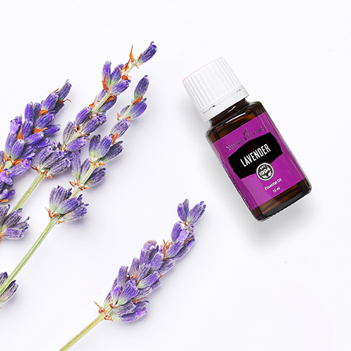 12 reasons Lavender Oil is still our favourite