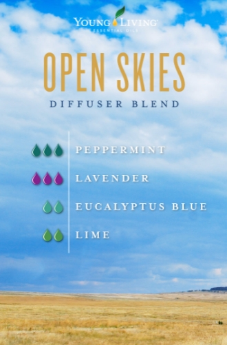 Open Skies Diffuser Blends