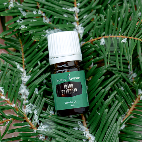 6 ways to get grounded using Idaho Grand Fir Essential Oil