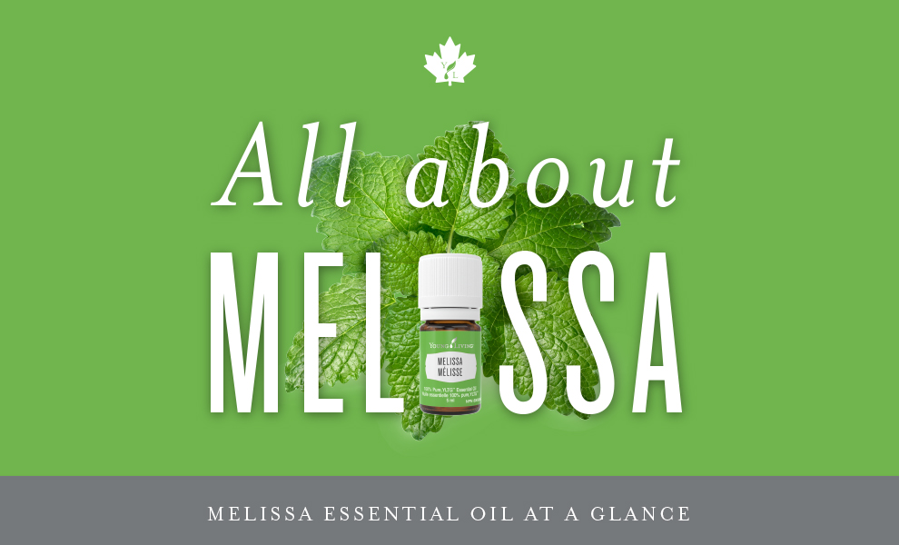 All about Melissa Oil