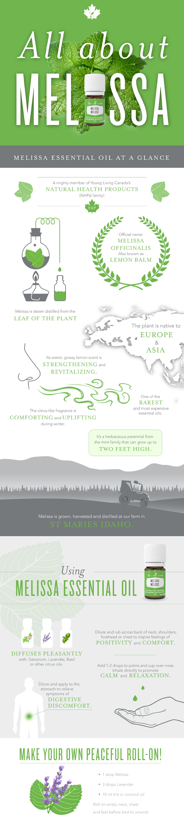melissaenrollment_infographic_en_ca_0317_bh_r2