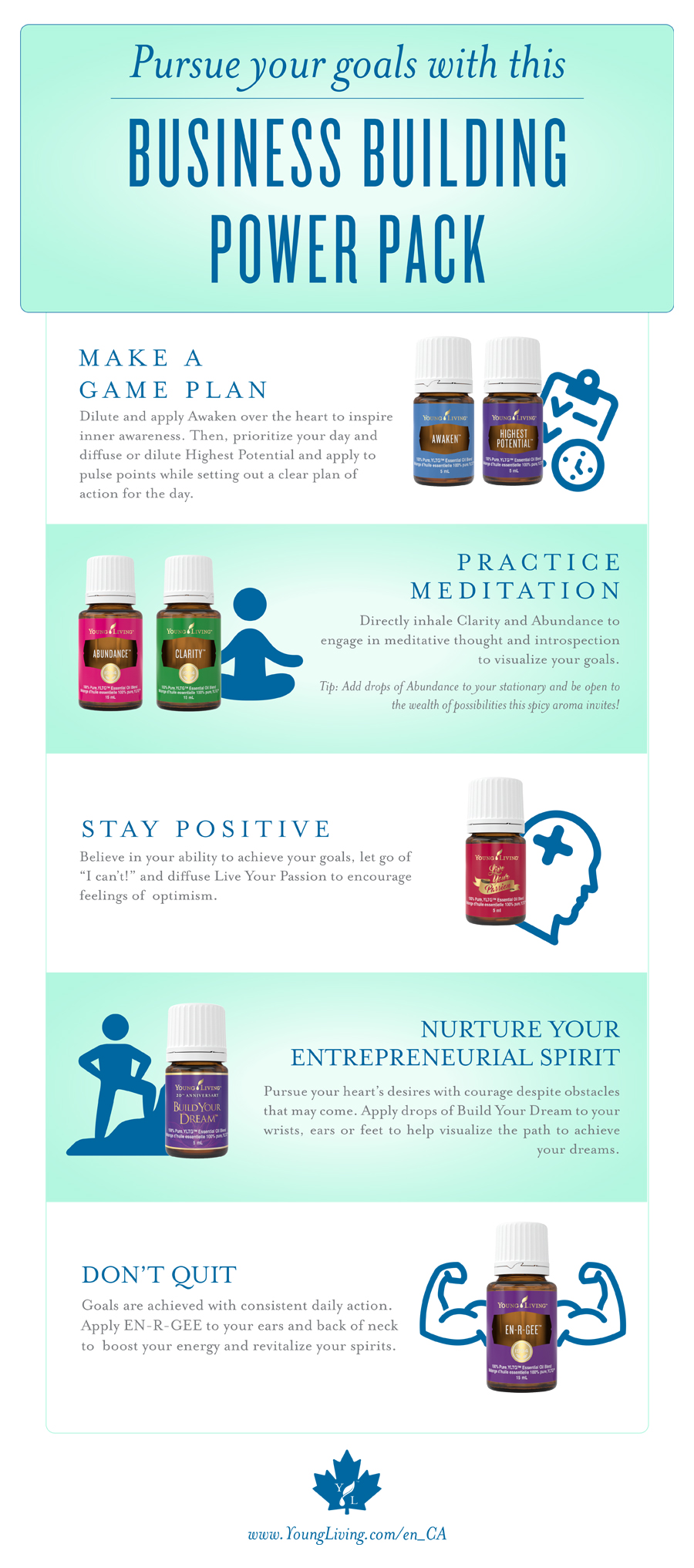 young living business building infographic