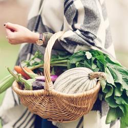 Une saison de récolte, de bien-être et de gratitude