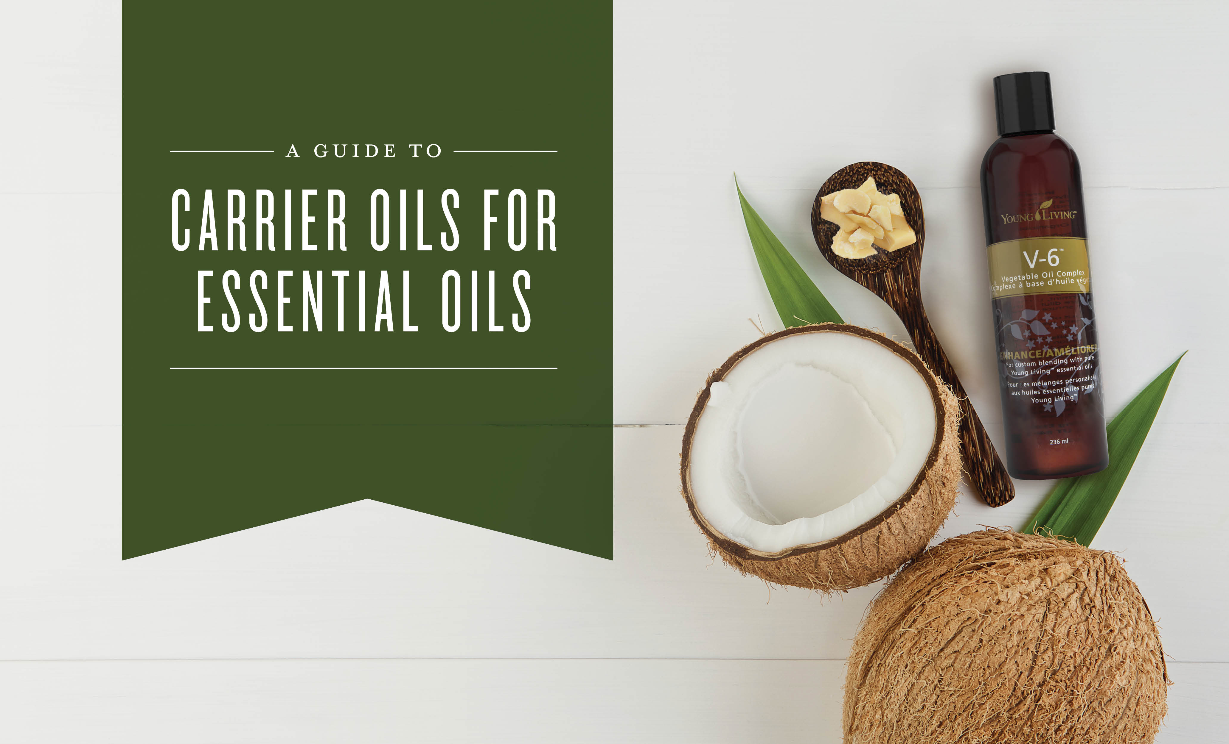 carrier oils for essential oils featured image