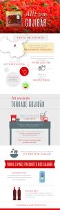 to use Goji Berries / wolfberries infographic