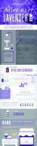 All About Lavender Essential Oil Infographic