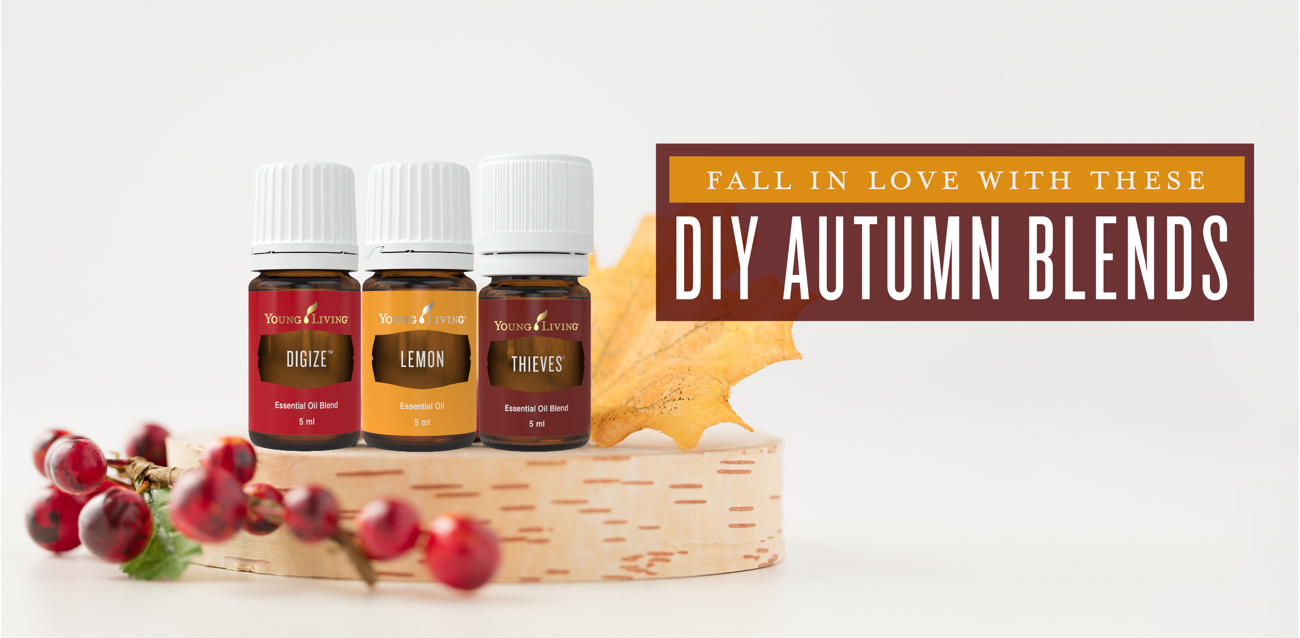 Fall In Love With These Diy Autumn Blends Young Living Blog