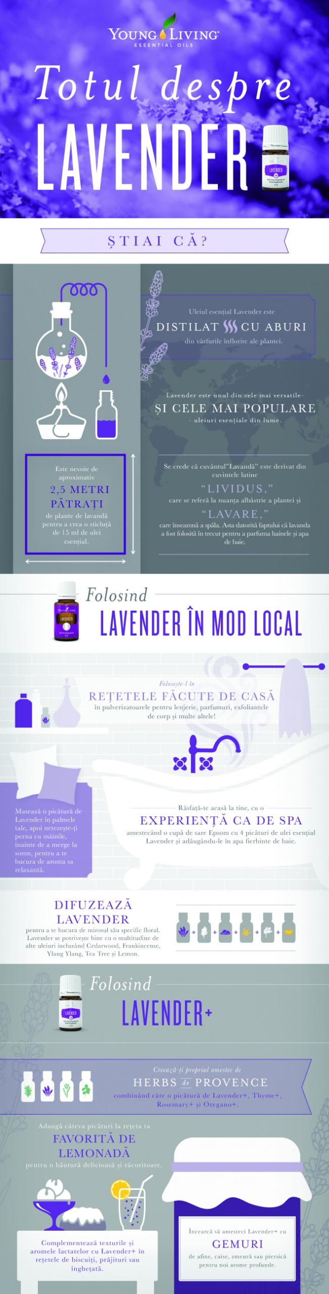 Totul Despre Lavender