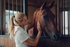 Bruin paard in de stal met eigenaar
