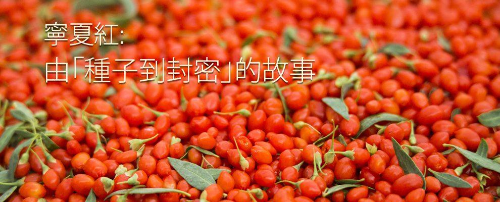 ningxia-red-zh