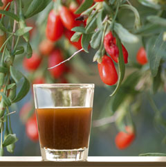 NingXia Red: A Seed to Seal Story