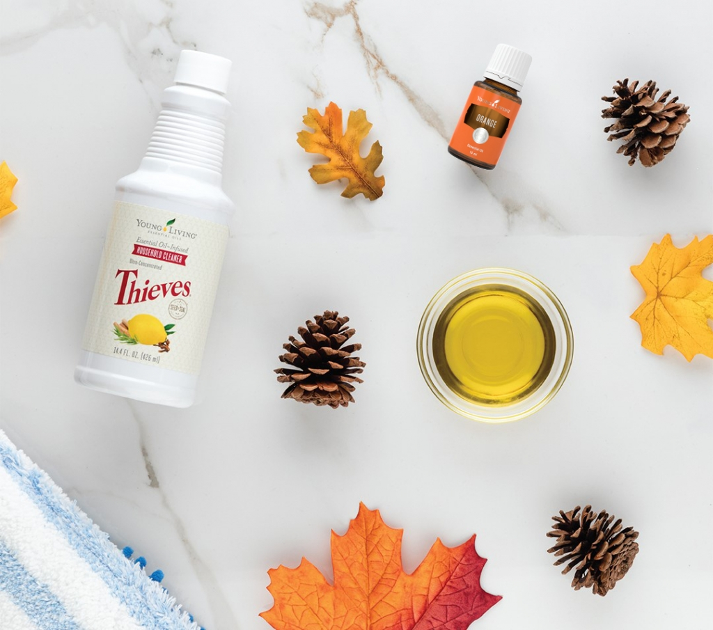 Thieves Household Cleaner and Orange Essential Oil