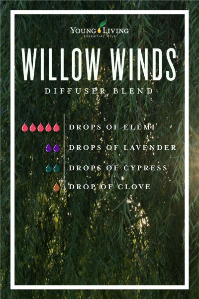 Willow Winds Diffuser Blend
