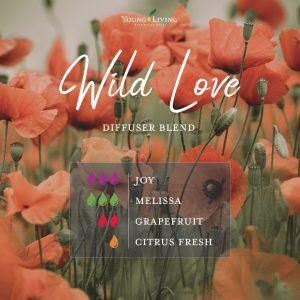 romantic essential oil diffuser blend recipe-Wild Love