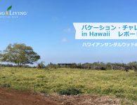 hawaiireport