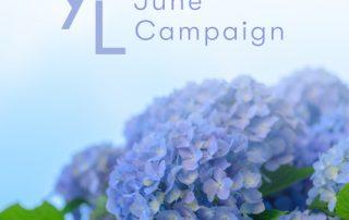 6月1日(火)~6月25日(金) YLおトク便限定キャンペーン|恵みの雨の季節に。