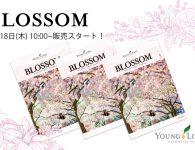 blossom_sale2