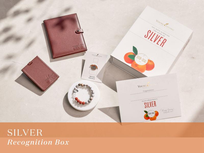 シルバー レコグニションボックス