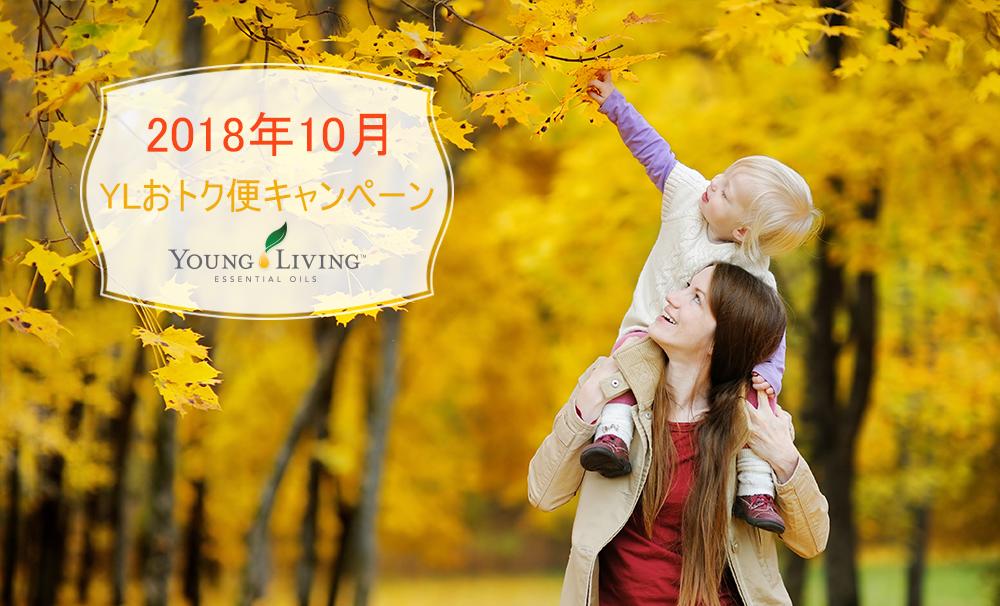 2018年10月 YLおトク便限定キャンペーン