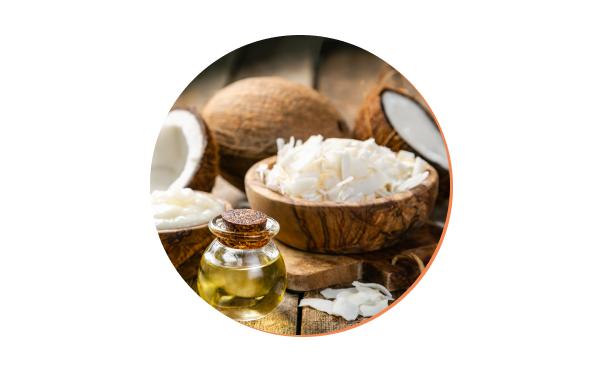 MCT オイル(中鎖脂肪酸) 毎日の健康とライフバランスをサポート