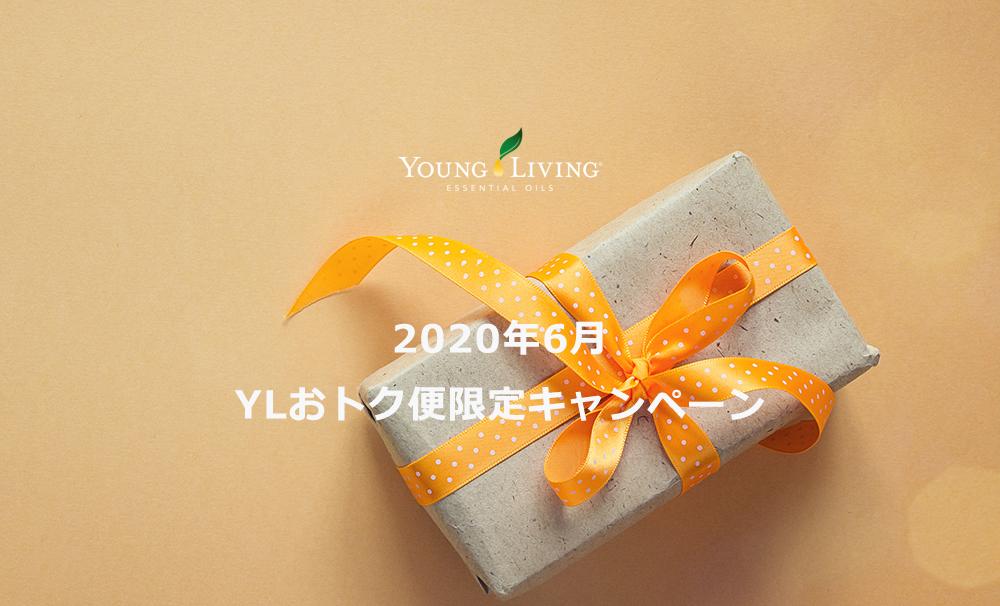 2020年6月YLおトク便限定キャンペーン