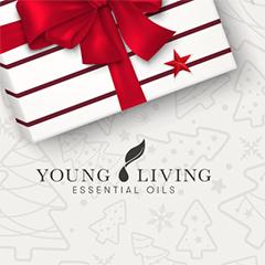 December PV promotion