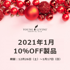 10 % Discount on January