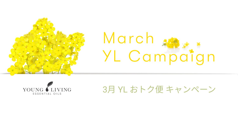 2021年3月YLおトク便限定キャンペーン