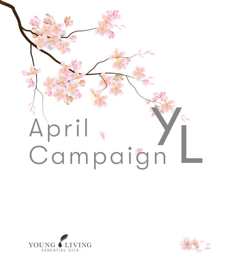 April 2021 YL Otoku-bin (ER order) Campaign