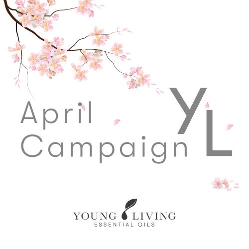 2021年4月 YLおトク便限定キャンペーン 期間 4月1日(木)~4月25日(日)