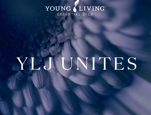 【オンライン】10月15日(金) YLJユナイツ開催決定! 景品が当たるクイズコーナー復活!新コーナーも誕生!