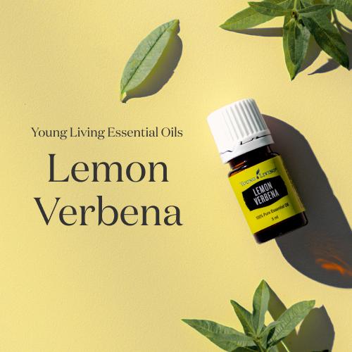 純度100%!太陽の光がまぶしいレモン畑のような香り。エッセンシャルオイル レモンバーベナ 5mL