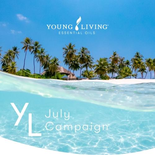7月1日(木)~7月25日(日) YLおトク便限定キャンペーン|お肌、身体、心、環境を整えて快適な時間を。
