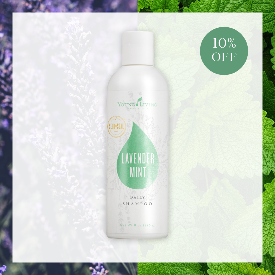 Discounted Lavender Mint Shampoo