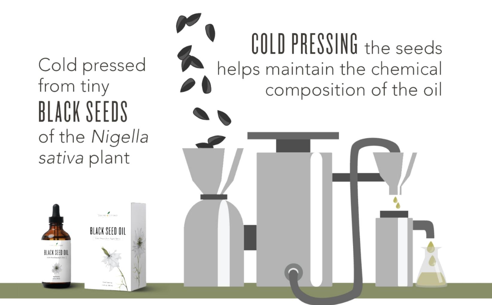 コールドプレス製法(低温圧搾法)