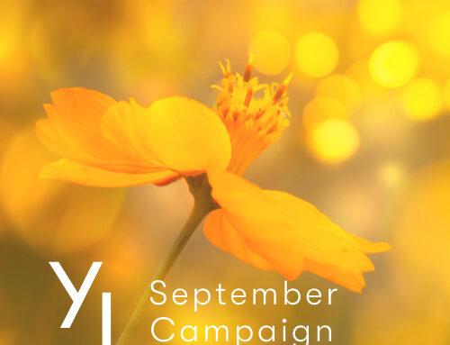 10月1日(金)~10月25日(月)YLおトク便限定キャンペーン|優しい香りで満たしてくれるアイテム