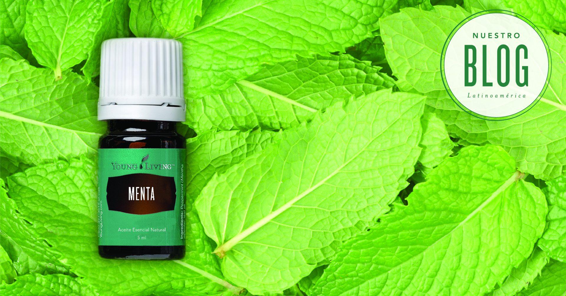 11 usos del aceite esencial de menta