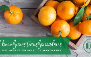 Beneficios del aceite esencial de mandarina