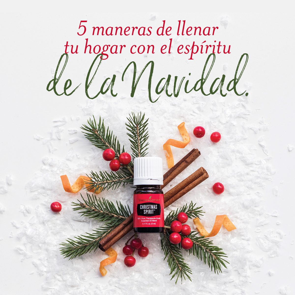 5 Maneras de llenar tu hogar con el Espíritu de la Navidad