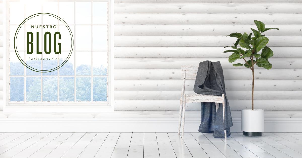 Sé ecológico en casa: 10 sencillos consejos para una vida sustentable