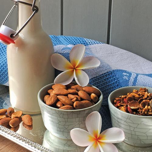 Easy Vegan Nut Mylk