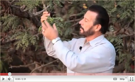 Gary Young Talks About Young Living's Oman Distillery