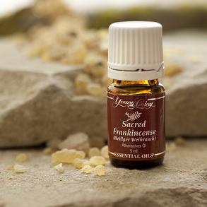 Boswellia Sacra | Young Living Sacred Frankincense