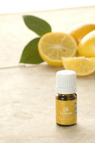 Image result for picture of young living lemon oil