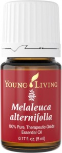 Tea Tree (Melaleuca Alternifolia) Essential Oil Bottle | Young Living